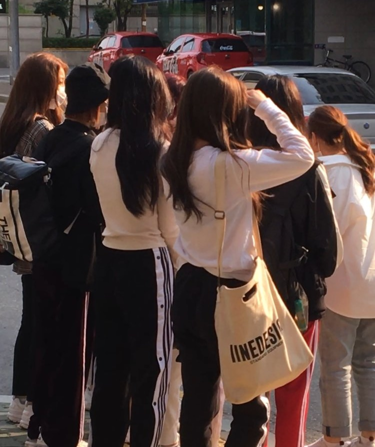 韓国人 虹プロ メンバー